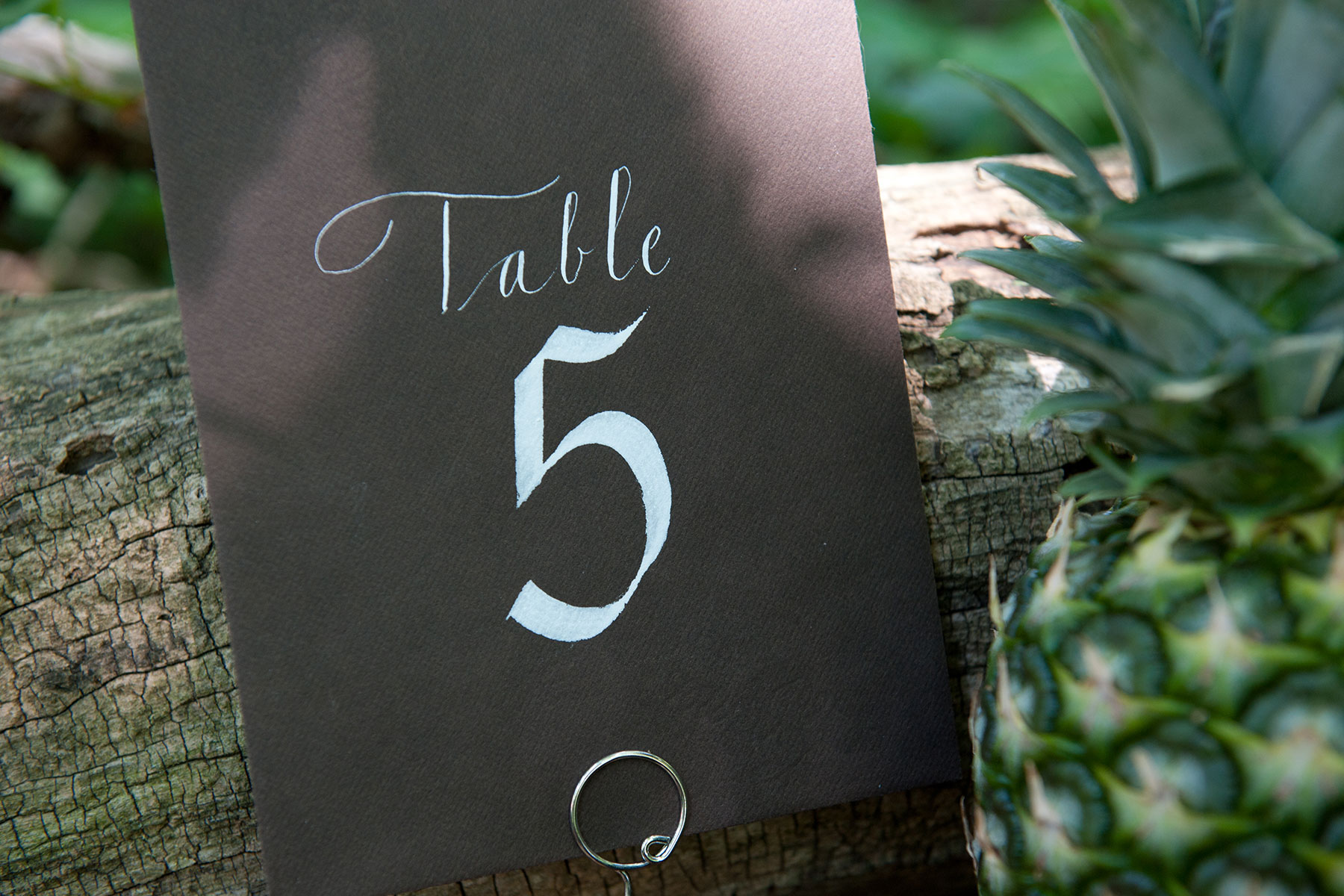 Jan Boyd Table Numbers
